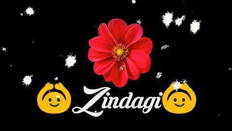 Zindagi Do Pal Ki Whatsapp Status